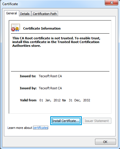Click install certificate on general tab.